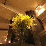黄色い百合の花 -2