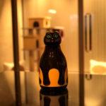 猫の魔法瓶-1
