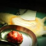 フェレットの巨大副腎腫瘍-1